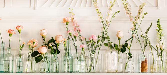 horizontal flowers